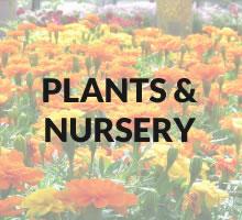 Plants/nursery