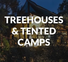 Treehouses / Tented Camps