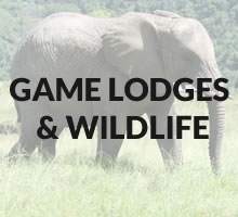 Game Lodges / Wildlife