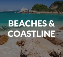 Beaches / Coastline